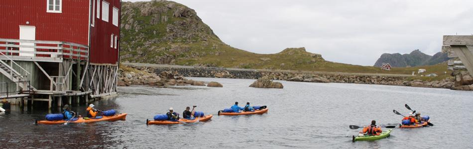 Kayak Guide in Vesterålen
