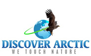 Discover Artic